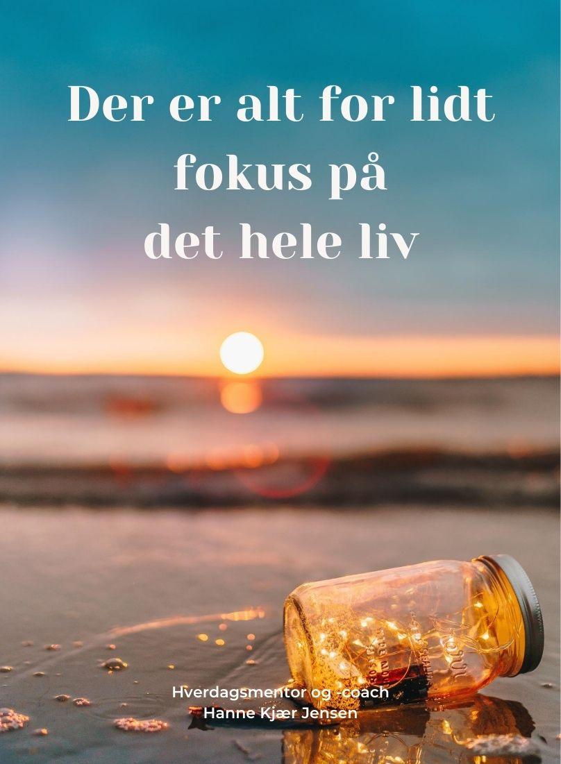 Fokus på det hele liv - hverdagsmentor.dk